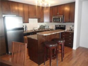 Fully Furnished 2 Bedroom Apartment in South Terwillegar