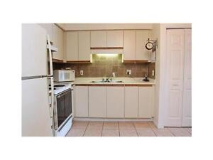 Bright Clean Carpet Free Condo Available March 1st Kitchener / Waterloo Kitchener Area image 5