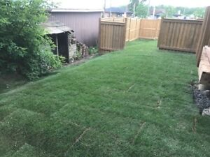 LANDSCAPING SERVICE!! SOD INSTALLATION AMCON