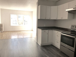 Newly renovated 2 bedroom apartment downtown Queen St. Must see!