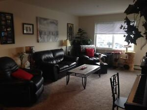 Apartment Room for Rent - Roommate Needed