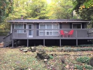 Renovated Open Concept Family Cottage south of Tobermory 118