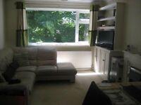 Lovely 1 bedroom flat - central Fareham