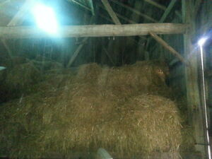 grain bin and straw for sale