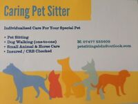 Caring Professional Pet Sitter - Aberdeen City.