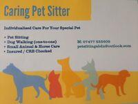 Caring Professional Pet Sitter - Aberdeen City.