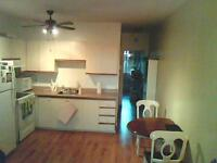 Clean and quiet 3 1/2 apartment in Wellington, Verdun, August 1