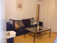 Modern Ground Floor One Bedroom Flat with Private Patio & Parking Located close to Hanger Lane St