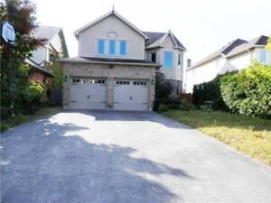 North Barrie-2Bdrm Lower-Available Immediately