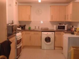 Extra Large Room - Camberwell Green