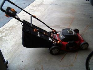 Homelite Electric Lawn Mower Lookup Beforebuying
