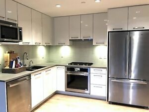 Brand new 2 Bed 2 Bath Penthouse Unit with Large Outdoor Space