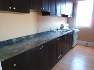 1170 ALBERT ST - 1 BEDROOM LARGE RENOVATED APARTMENTS