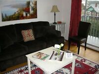 Very Bright One Bedroom Unfurnished Suite near the Marina