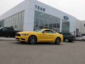 2017 Ford Mustang ECOBOOST, 100A, SYNC, REAR CAMERA, REAR SPOILE