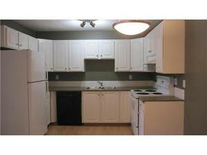 OLIVER AREA - Trendy Central One Bedroom Suite close to MacEwan