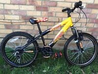 Boys Bike Raleigh age 6-8 years old Wokingham £30