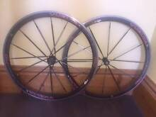 Vuelta Carbo Pro Wheelset West Hobart Hobart City Preview