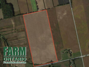 Bare Land! Great Location for a Home or Barn Set Up!
