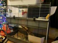 Large double Indoor guinea pig / rabbit cage
