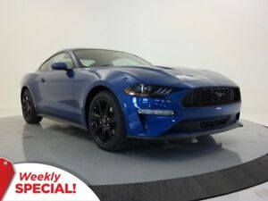 2018 Ford Mustang EcoBoost- B/T, USB, Black Appearance Package