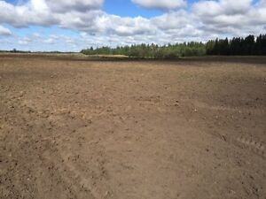 160 Acres Farmland / Cropland for sale Lamont