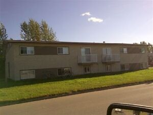 Nice 1 bedroom for rent plus Den in Meadow Lake
