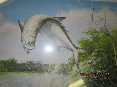 tarpon  fishing picture framed collectible