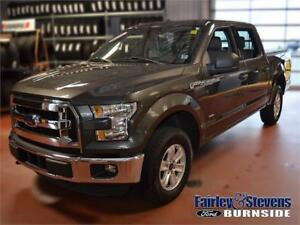 2015 Ford F-150 XLT $240 Bi-Weekly OAC