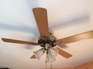 "42"" Ceiling Fan With Lights"