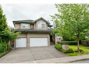 4 bedrooms luxury house for rent Port Moody & Coquitlam
