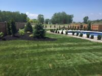 Lamoure Landscaping