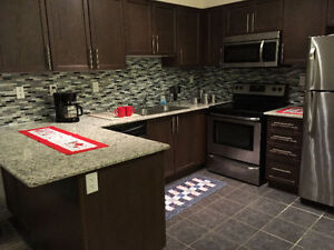 Luxury upscale 2-bedroom apartment for rent, May 1st