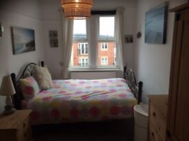 Nice bright clean fully furnished double room in Midanbury