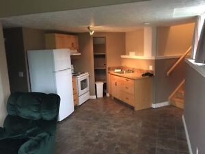 WOULD YOU LIKE TO CONVERT YOUR BASEMENT INTO AN APARTMENT ?
