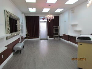 Office and Retail Space Available St. John's Newfoundland image 3