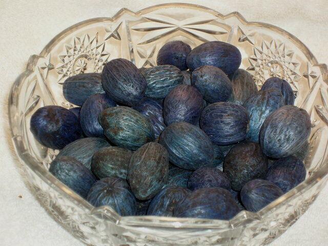 Amra Pods 20 Pc Beach Crafts Potpourri Botanicals Gourds