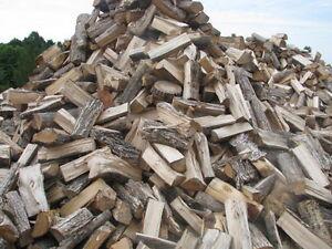 seasoned firewood Kingston Kingston Area image 3