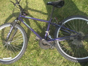 youth mountain bike, norco Jammer 18-speed youth mtn bike, 13 in