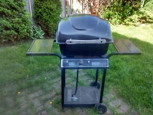 ~~~Master Chef Bbq for Sale~~~~