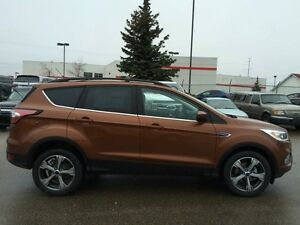 2017 Ford Escape SE Edmonton Edmonton Area image 2