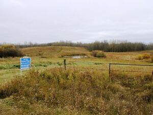 Private corner 3.88 acres available in Beaver County Strathcona County Edmonton Area image 1