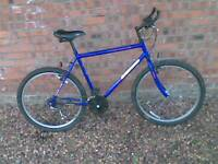 Townsend Grand Canyon Shimano. Excellent condition.