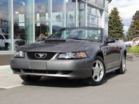 2003 Ford Mustang Convertible | 5 Speed Standard | Mach Audio Sy