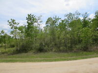 """Richer"" MB Treed Building Lot 104' X 200' Only $24,900!! WOW !!"
