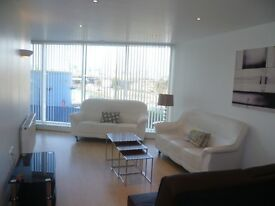 One Bedroom Apartment To Rent With Residents Gym Ross Apartments E16