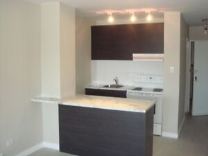 3.5 DECARIE FULLY RENOVATED