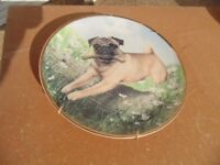 Danbury Mint Pug Collection Plate (Called Pug in Play) in as New Condition.