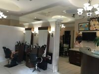 Salon Assistant Needed at Upscale Salon
