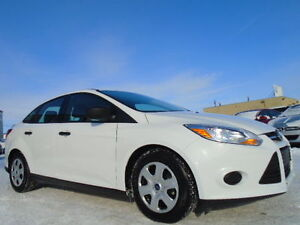 2014 Ford Focus SE SPORT PKG-ONE OWNER--AMAZING--ONLY 23,000KM